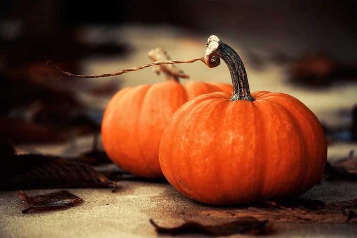 12. Pumpkin.....EVERYTHING! Pumpkin-spice latte, pumpkin bread, pumpkin muffins, pumpkin pie, well, you get the idea.