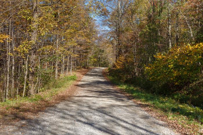 13. Zoar Valley Trail (Dover)
