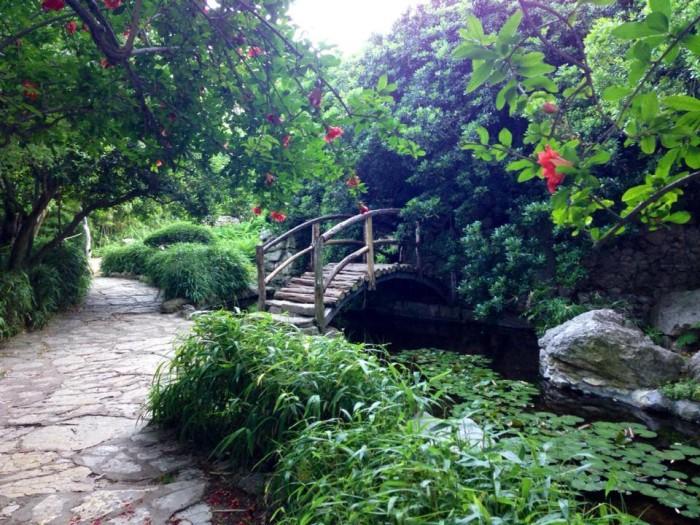3) Zilker Botanical Garden