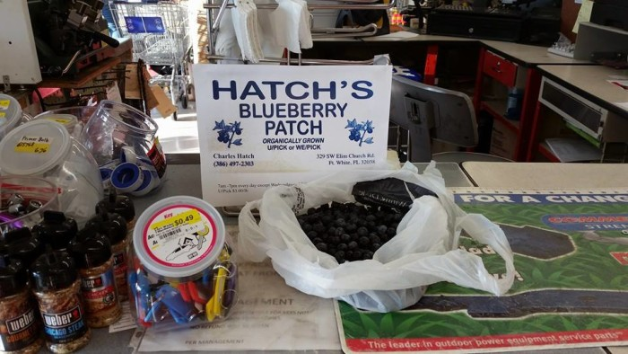 2. Hatch's Blueberry Patch, Fort White