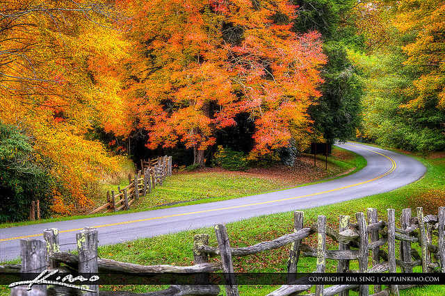 1. North Carolina is simply amazing year round, but especially in the fall.