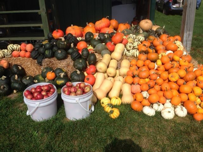 1. Lavalier's in Grand Rapids might be known for berries and apples like many other MN places, but they also have pumpkins and squash that you should definitely try!