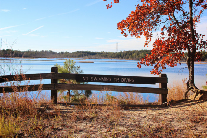 4. Double Trouble State Park, Bayville