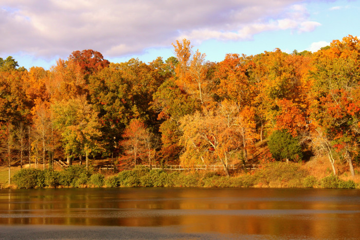 2. Chester State Park
