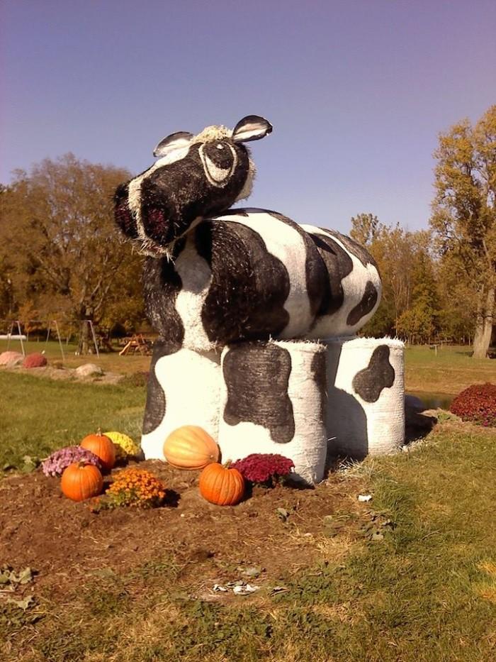 10. Knollbrook Farm