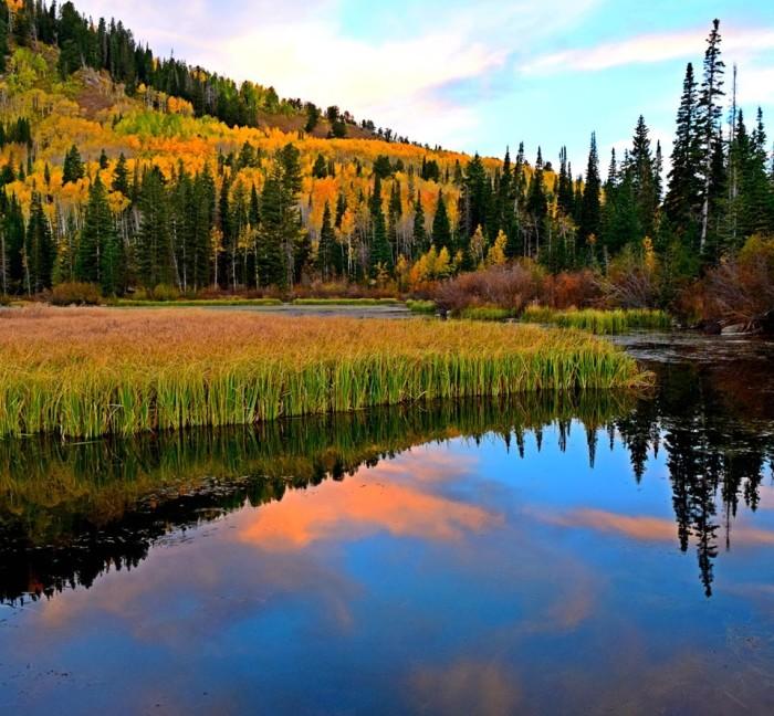 3. Bente Nielsen Love captured this shot of Silver Lake.
