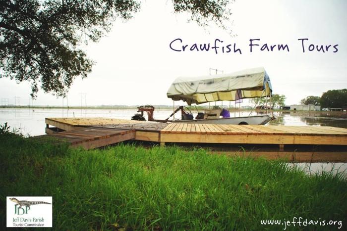 7) Visit a Crawfish Farm