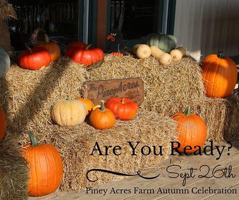 10.  Piney Acres Farm (1115 E 1000 N, Fortville)