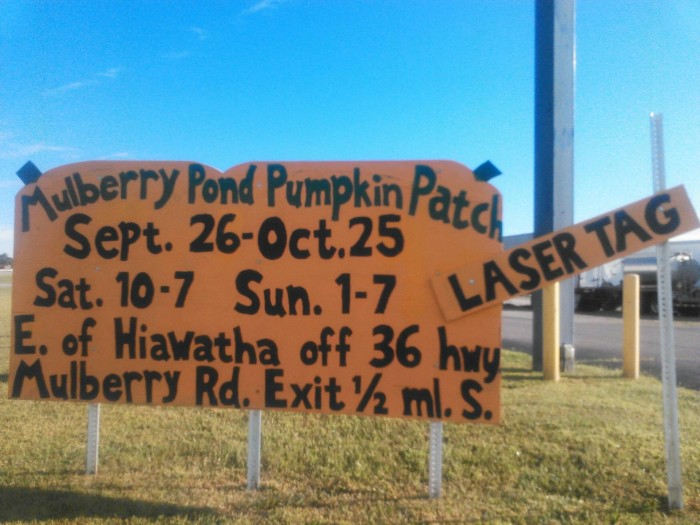 2. Mulberry Pond Pumpkin Patch (Hiawatha)