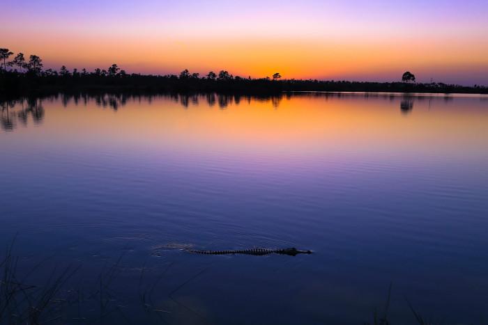 12. Pine Glades Lake