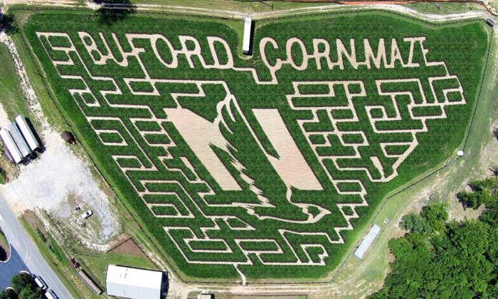 2. Buford Corn Maze - 4470 Bennett Rd, Buford, GA 30519