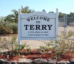 11. Terry