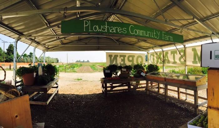 6. Plowshares Community Farm (Longmont)