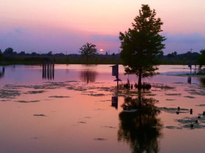 5) Sun setting on a beautiful private marsh.