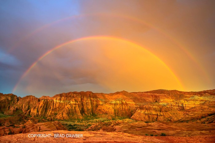 19. Brad Dawber captured this shot at Snow Canyon State Park.