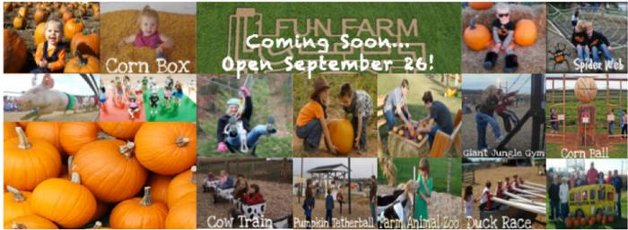 3. 1 Fun Farms (8291 IN-1, Farmland)