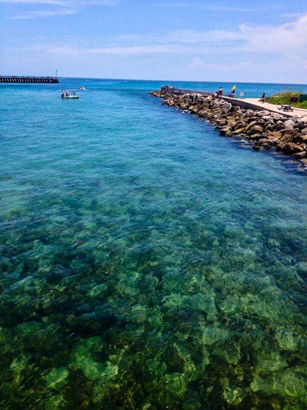 12. Thanks to Anne Rhine Niday for this photo of Sebastian Inlet Park.