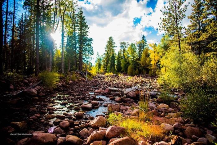 8. Tyler Gudmundsen sent us this photo of Dry Fork Canyon.