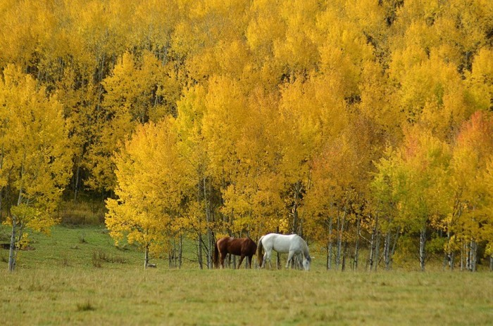 4. Chris Garcia, of Less Traveled Roads  Photography, took this photo of Park City.