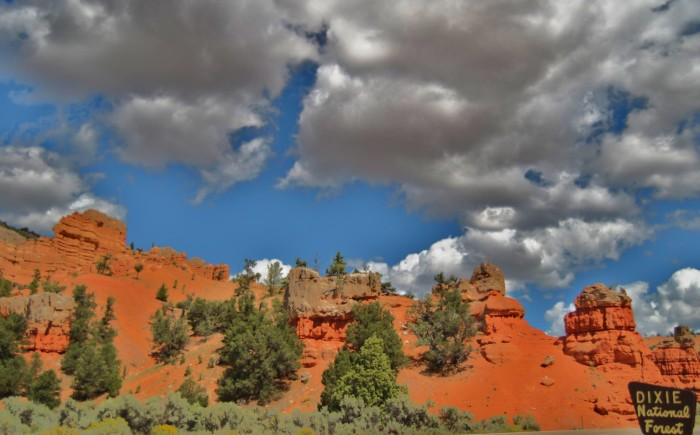 13. This is Gina Swasey's photo of the Dixie National Forest.