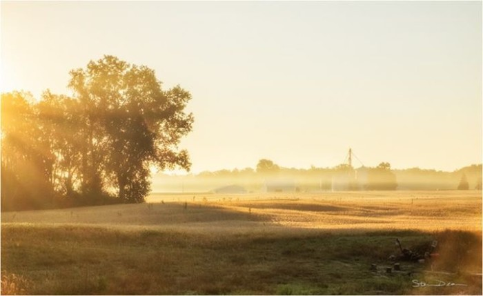 17. Steven Deam shared a beautiful picture of a farm near Columbia City. The combination of the fog and sunshine really make this picture.