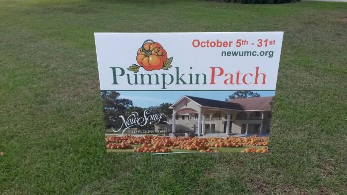 1. NewSong Pumpkin Patch, Prairieville