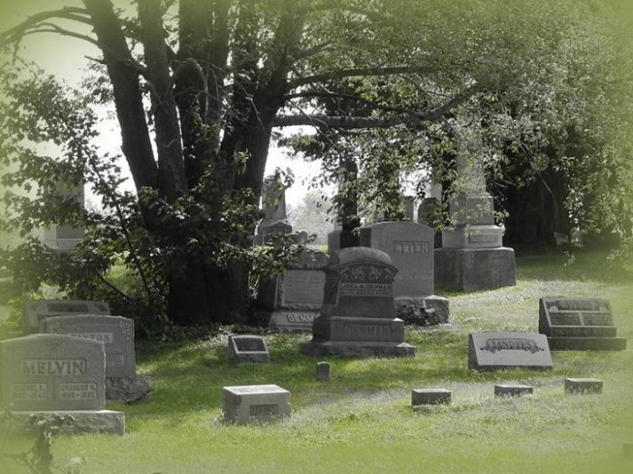 16. Penny Anglin decided to share a snapshot of Alamon Cemetery with us!