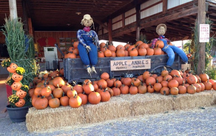 1. Apple Annie's Orchard Farm, Willcox