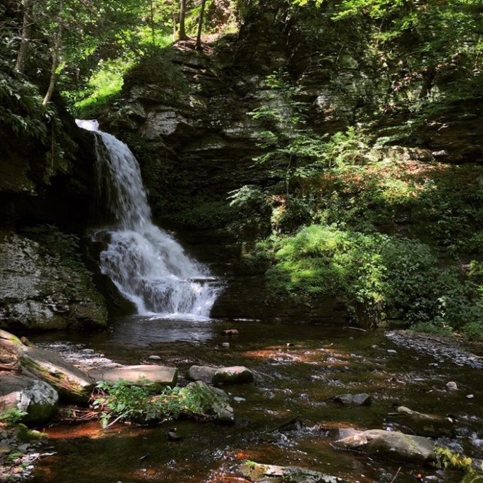 1. Ivan Reiff took this picture at Bushkill Falls.
