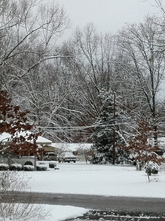 12. Snow may be a pain to drive in, but is sure did make for some beautiful scenery in Starkville.