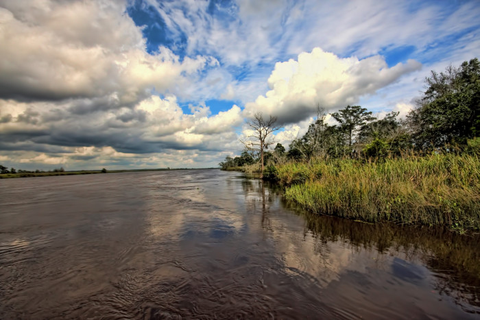 9. Altamaha River