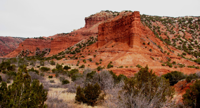 7) Caprock Canyons State Park