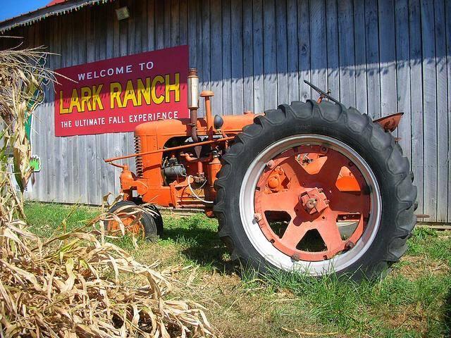11. Lark Ranch (1611 N Meridian Rd, Greenfield)