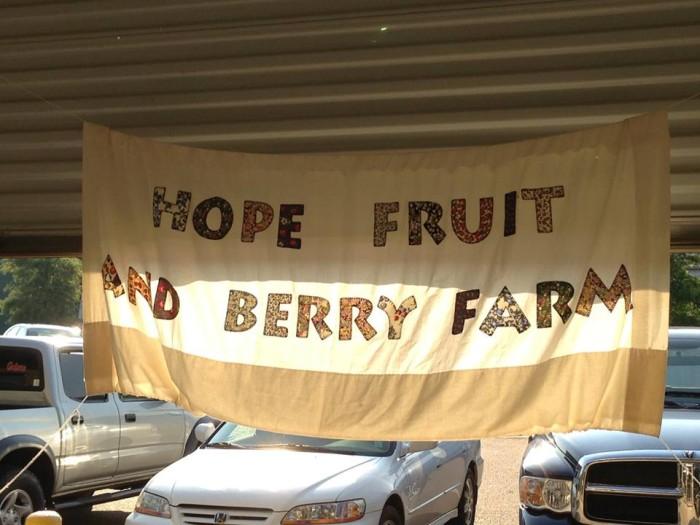 13. Hope Fruit and Berry Farm, Morton