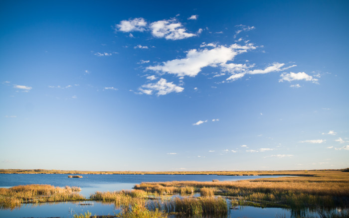 10. The marshland can be just as beautiful as the lakes!