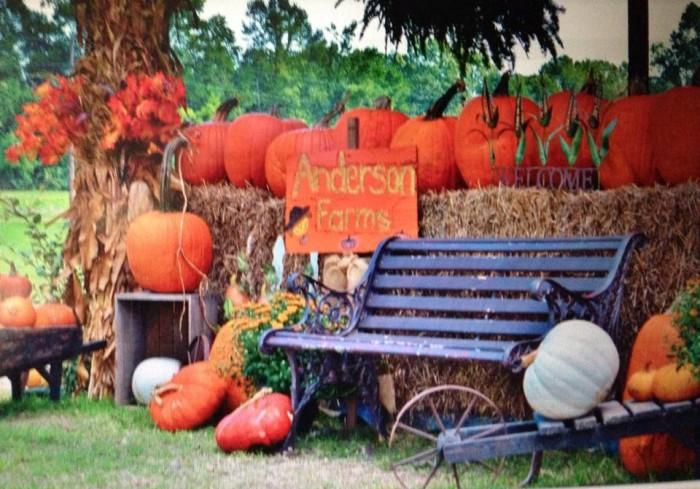 2. Anderson Farms, Amite