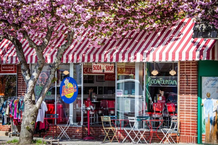 8. Rocky's Grill and Soda Shop, Brevard