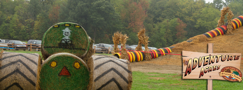 Don t miss these 15 great pumpkin patches in indiana for Where can i go apple picking near me