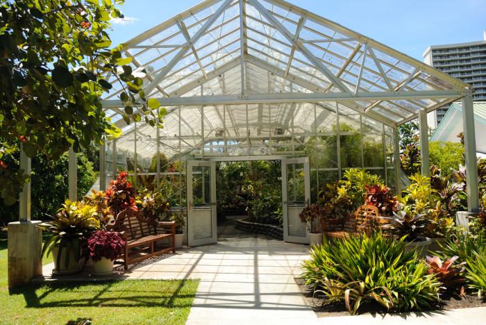 14) Foster Botanical Garden, Oahu