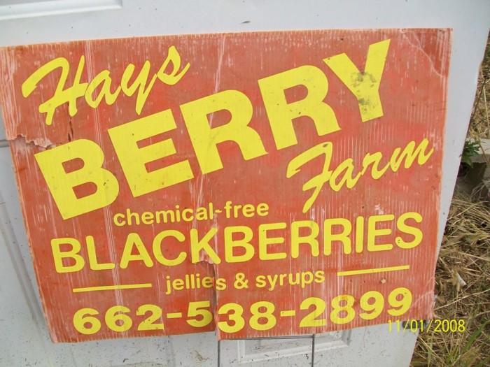 14. Hays Berry Farms, Dumas