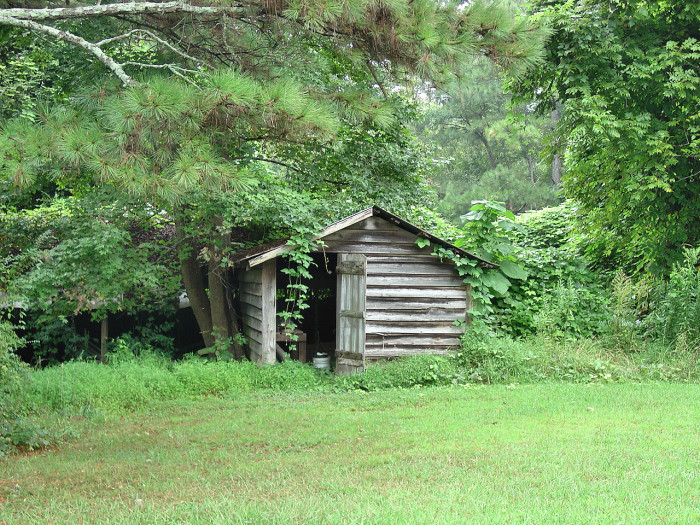 7. Haralson County
