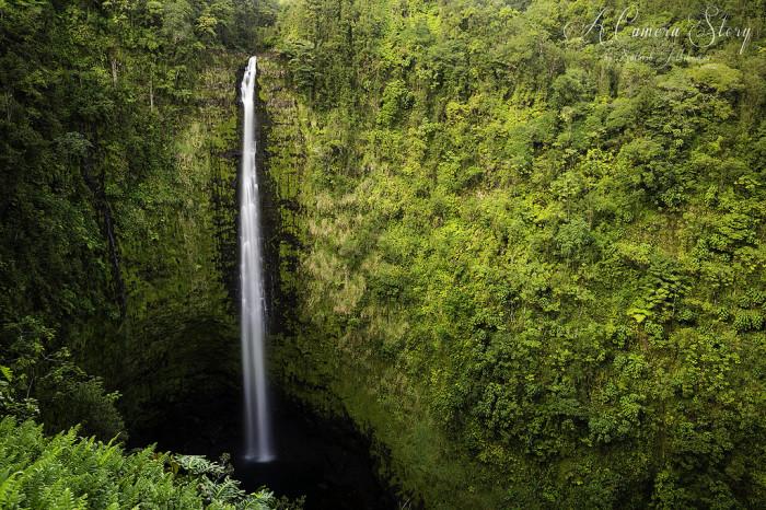 15) Check out the Big Island's Akaka Falls.