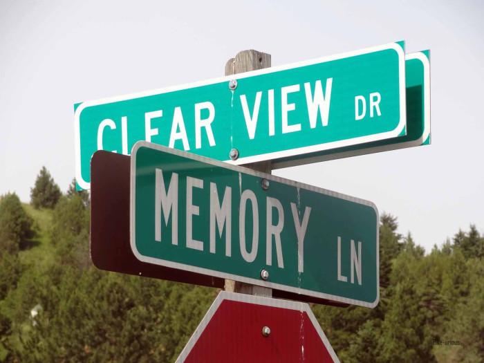 8) Memory Lane