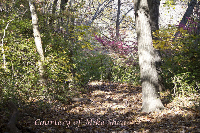 5. Hike Along the Wabash Heritage Trail