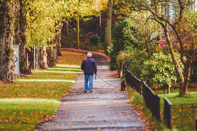 5. Walk a Long Way