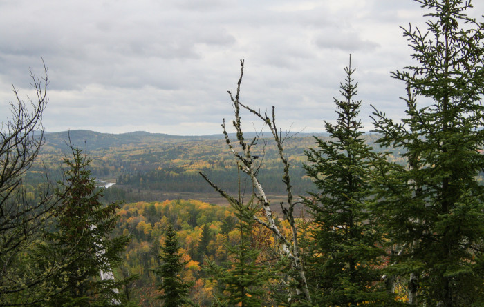 1. Enjoy the spectacular fall foliage! Drive, hike, or walk your way through the changing leaves!