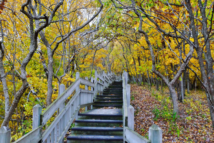 15. But most importantly, you know fall is coming because we live in a gorgeous state, where we are lucky enough to experience all four beautiful seasons, each one as amazing as the last.