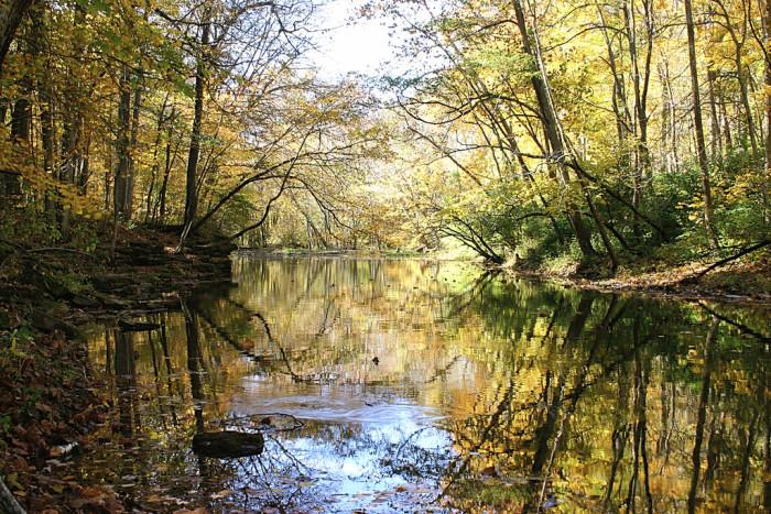 5. John Bryan State Park (Yellow Springs)