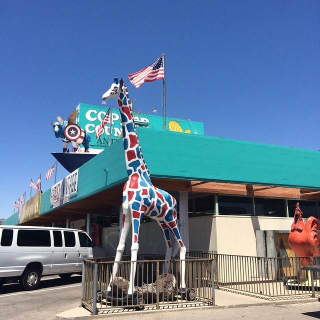 4. Copper Country Antiques, Tucson