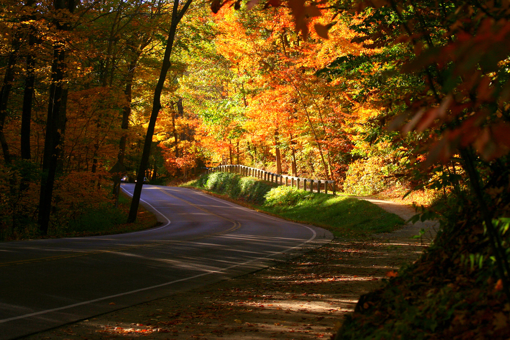 13 Country Roads In Ohio To Take For A Scenic Drive